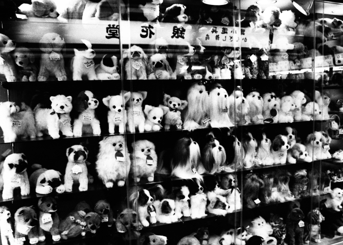 dogs-muppets-shop
