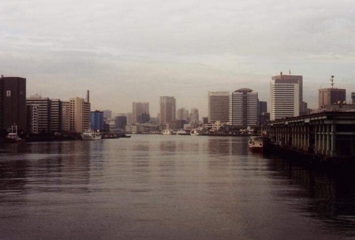 fleuve-marché-poissons